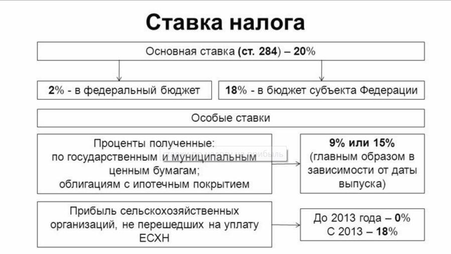 Ставки по налогам с таблице