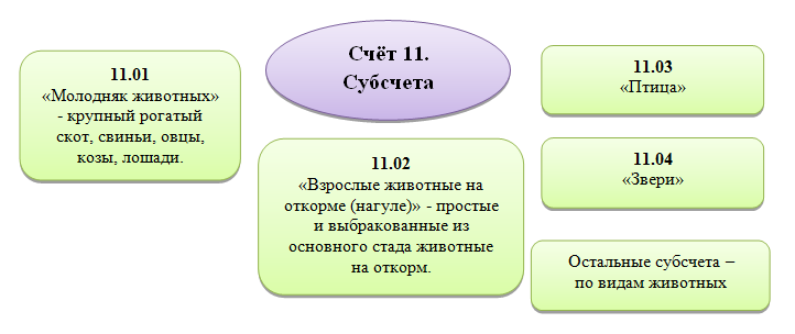 Субсчета 11 счета